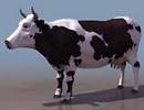 3D модель Корова