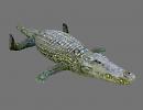 3D модель  крокодил