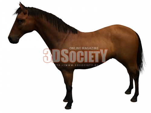 3D модель  Лошадь