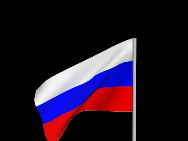 модель флага