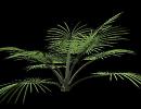 3D модель  Неведомое растение))