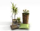 3D модель  растения